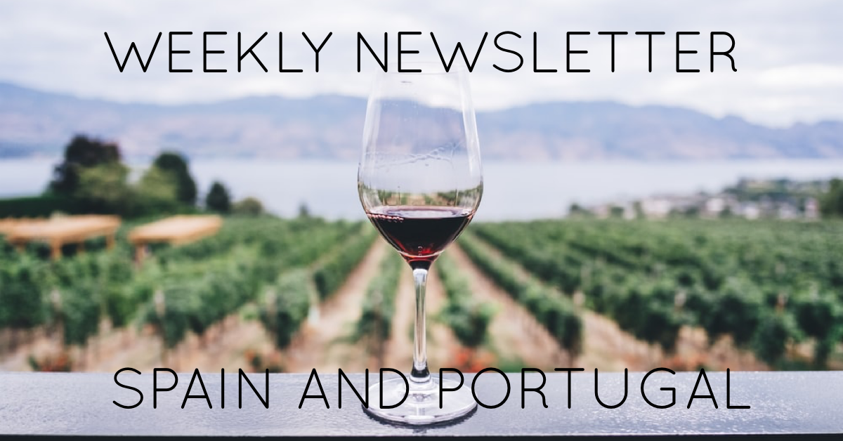 Read our brand new Newsletter this weekend!