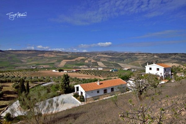 5 Bed  Finca For Sale